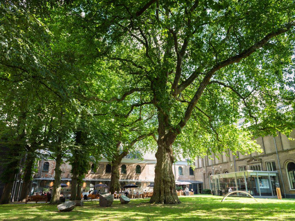 Dordrechts Museum - Dordrecht - cultuur - tuin