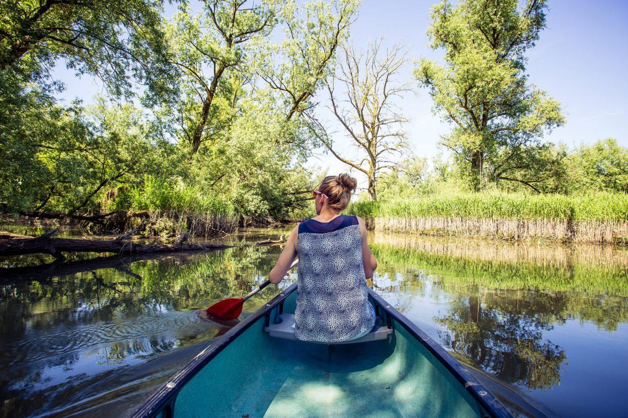 Nationaal Park de Biesbosch - Dordrecht - kano - varen - water